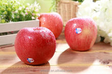 yantai fresh apple fresh Fuji apple good price export poem fruit