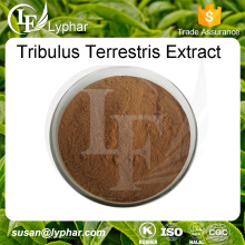 Lyphar Provide Best Tribulus Terrestris Extract Powder