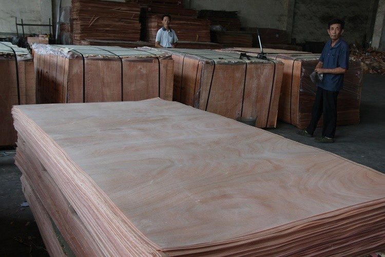 0.3mm nature gurjan wood veneer wood veneer/keruing laos