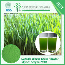 Competitive price Organic wheat grass juice powder,Wheat Grass Powder,Dehydrated Wheat Grass Powder-100% pure natural