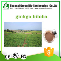 Organic 2017 Trending Products China Herbs Ginkgo Biloba Extract 40mg