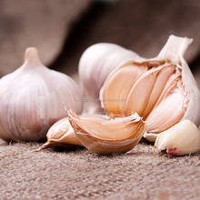 2017 Harvest Natural Fresh Red Garlic With Good Price