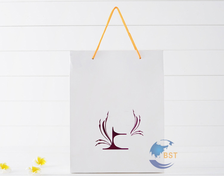 Contemporary hot selling apparel carry paper bag design