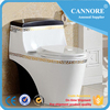 Siphonic Jet Flushing Modern Design Toilet Colored Water Closet
