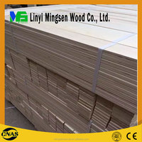 construction plywood/building plywood(90*900)from China plywood manufacturer