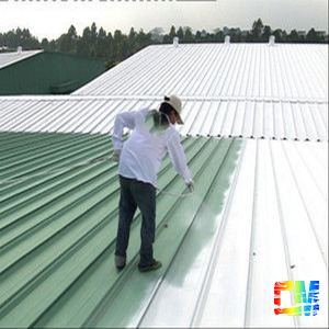 Building Roof Heat Insulation Coating high temperature paint