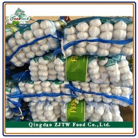 Pure White Garlic, 3Pcs/Net, Chinese Pure White Garlic Without Bottom Price