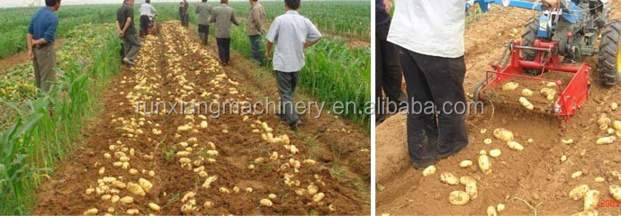 Hand walking tractor driven one-row mini sweet potato harvester for sale