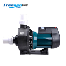 FLD-200 CE guangzhou small electric swimming pool water pump