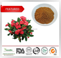 2015 HOT SALE high quality flower extract of crown of thorns/holy thorn extract/Crown of thorns extract