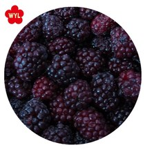 Market price hot selling iqf frozen blackberry for jam