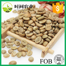 Bulk green robusta coffee beans seller