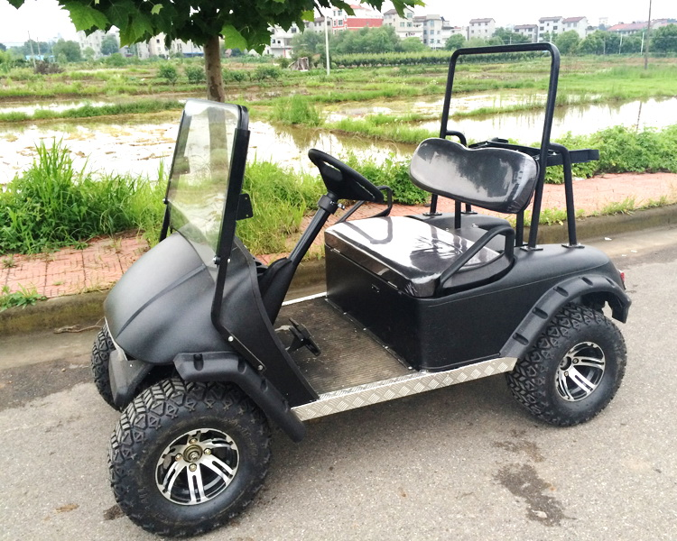2seater electric power electric open top sightseeing golf buggy Cart price