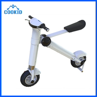 36V 250W Brushless Gearless Motor Mini Electric Bicycle Folding Bike OEM&ODM