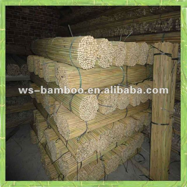 Agriculture Products/Tonkin bamboo cane