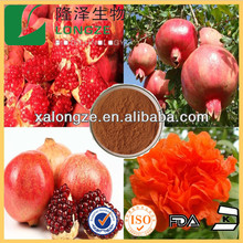 herb medicine plant extract pomegranate extract