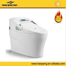 Luxury Bathroom Design Automatic Flushing Hotel Smart Toilet One Piece Intelligent Toilet