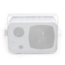 High SPL Audio Full Frequency Wall Hanging Speaker