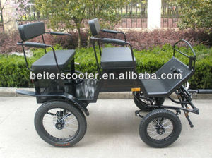 2013 Pony Carriage/Buggy/Wagon For Sale
