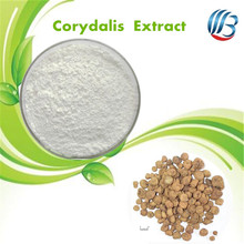 LanBing supply hot sale corydalis yanhusuo extract rhizoma corydalis powder
