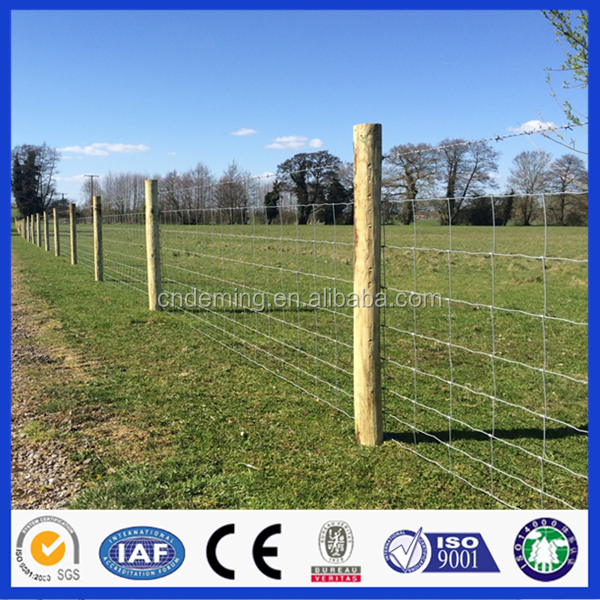 Cheap Galvanized Metal Farm Sheep Fencing/Cattle Fence/Field Fencing