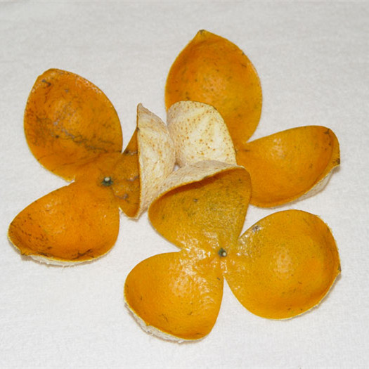 High quality organic spice dried orange peel with low price