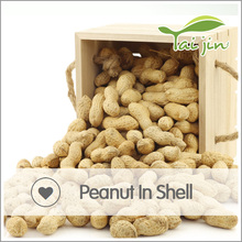 wholesale peanut in shell