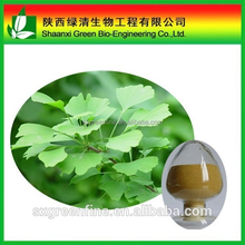 Gmp Factory Supply Ginkgo Biloba Leaf/Natural Ginkgo Biloba Flavone.ginkgo Flavone Glycosides/Ginkgo Biloba Extract Flavones 24%