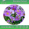 Pure Banaba Powder,Banaba Leaf Powder