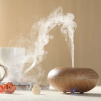 2014 Newest gel can air freshen - Aroma Humidifier