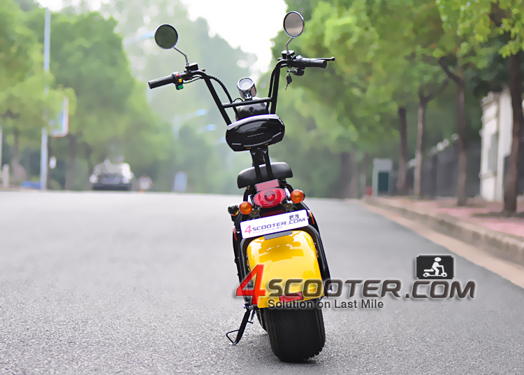 EEC Model City Mobility Citycoco 1500 W Adult Electric Scooter