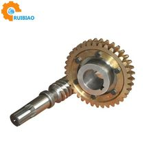 Reducer worm and worm gear