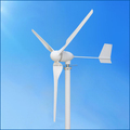1kw 24v/48v three phase magnetic wind power generators for sale China