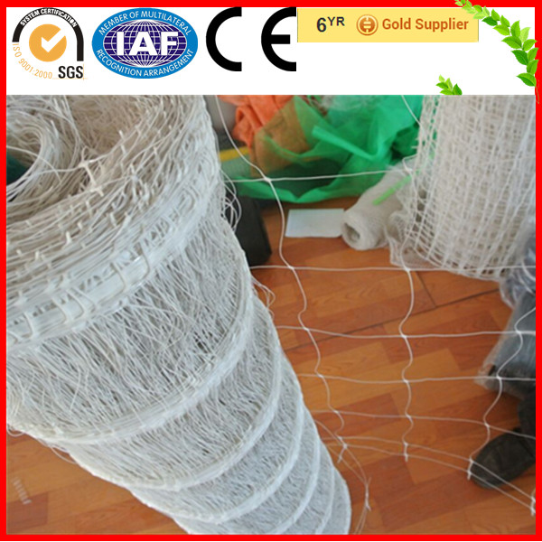 Heavy Duty 100% Virgin Material Plastic Cucumber Plant Climbing Net(Factory)