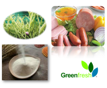 Semi-refined Carrageenan best price E407