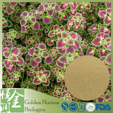 China Wholesale Coleus Forskohlii Extract Forskolin Powder
