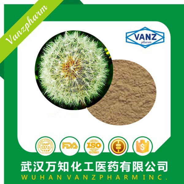 High quality dandelion extract 5%