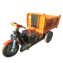 China Supplier safe and popular self balancing smart cargo tricycle electric motorcycle