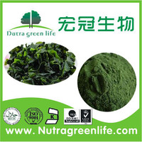 healthy organic spirulina powder