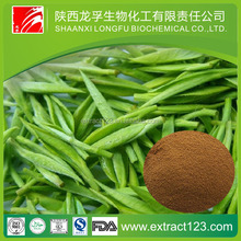 8 Years Production Experience Supply Green Tea Extract /Instant Green Tea Powder With Free Sample