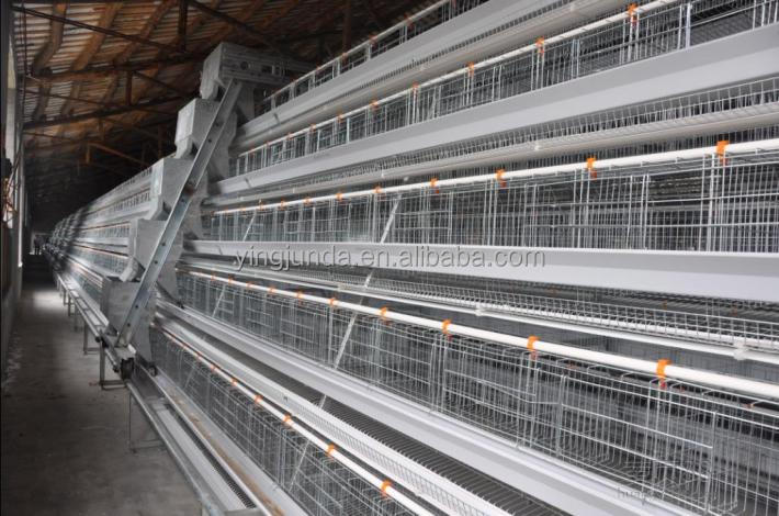 chicken laying cage