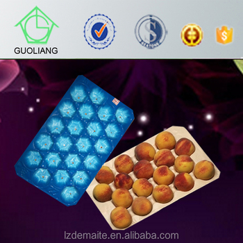 FDA Approved Food Grade Custom Made Thermoformed Disposable Plastic Fruit Tray