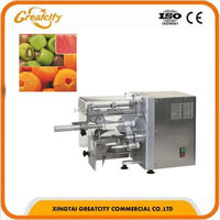 Automatic Stainless Steel Fruit Peeler /Peach Apple Core Remover Peeling Machine (0086-18832961692)
