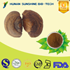 Hot sale Phellinus igniarius P.E. powder 2%-20% Triterpene