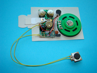 message recorder module for greeting cards/greeting cards musical ic chip