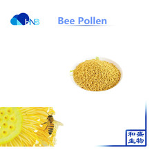Free sample with 15 years experience factory provide Bee pollen