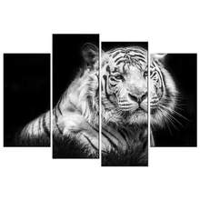 King of the Jungle White Tiger HD Picture Canvas Prints Wild Animal Giclee Prints Wholesale Canvas Artwork 4 Panels