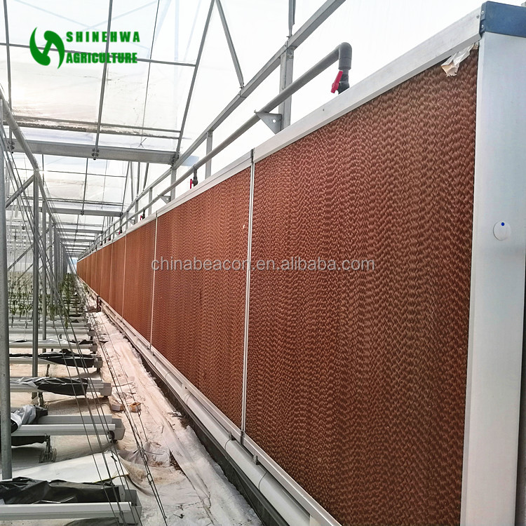 2017 Greenhouse Evaporative Cooling Pad For Poultry House