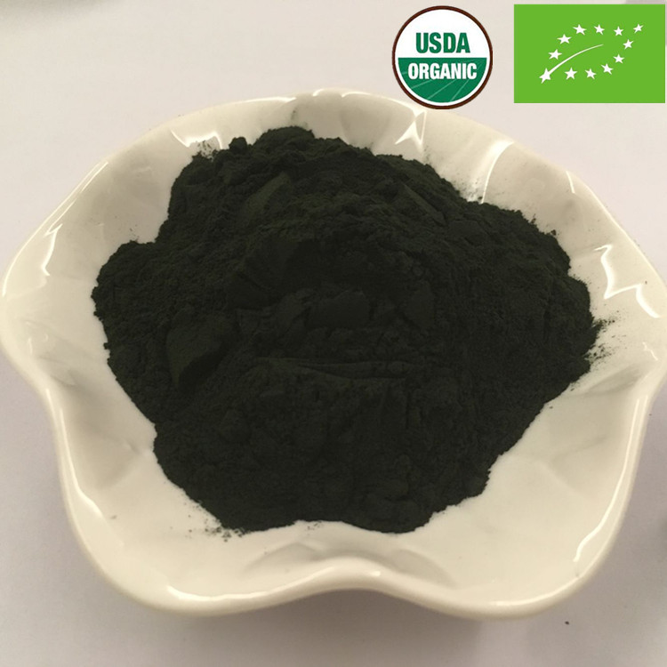 Organic Chlorella Vulgaris Powder Bulk