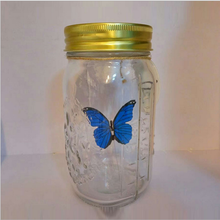 UCHOME Perfect Butterfly Wedding Gift and Factroy Price Glass Butterfly in a Jar